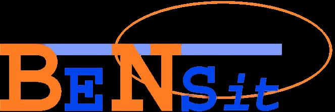BeNsit ICT service bedrijf